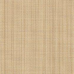 17262 Glisten/Gold